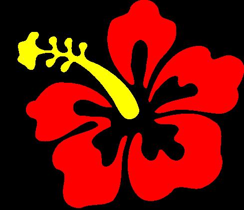 Aloha Spirit Lifestyle